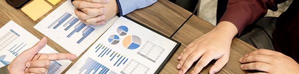 Gestió empresarial, economia i finances